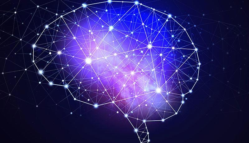 神経科学がコーチングを促進し、コーチングが神経科学を促進する